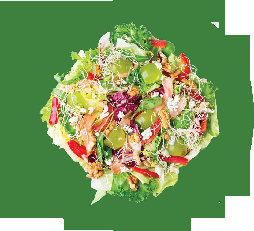 salatka-head-1